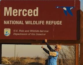 Wednesday Walk - Merced NWR
